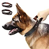 PET ARTIST Genuine Leather Dog Collar for Walking & Training, Heavy Duty Dog Collar with Handle for Medium & Large Dogs Neck for 19-23.5''(1.5' Width)