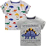 VASCHY T-Shirts for Little Boys, Kids Size 2-6T Boys Pattern Cotton Short Sleeve Tee Shirts for Kids Toddlers 2pcs Set Gray Dinosaurs