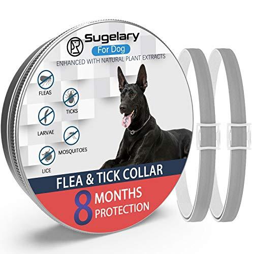 Sugelary Collare Antipulci Cane, Collare Antipulci per Cani Impermeabile Regolabile con Protezione di 8 Mesi, Collare Antipulci per Cani Arricchito con Oli Essenziali Naturali (2Pcs)