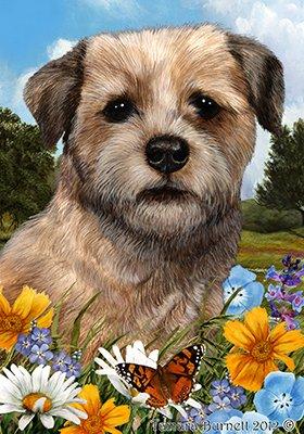 Best of Breed Border Terrier - pavillons de jardin de fleurs d'été