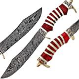 Damascus Steel Hunting Knife - Fixed Blade Knives with Sheath - Handle Combination of Walnut Wood and Camel Bone with Brass Spacer (RW)