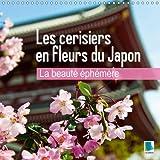 La beauté éphémère - Les fleurs du printemps. Calendrier mural 2017