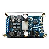 GAOHOU オーディオ パワーモジュール デュアルチャンネル 50Wx2 デジタル アンプモジュール