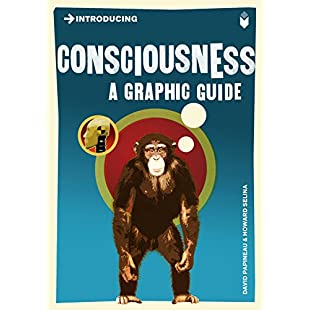 Introducing Consciousness A Graphic Guide (Introducing...):Greatestmixtapes