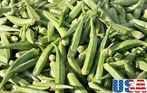 USA-VERKÄUFER Alabama Red Okra 50-400seeds HEIRLOOM NON GMO