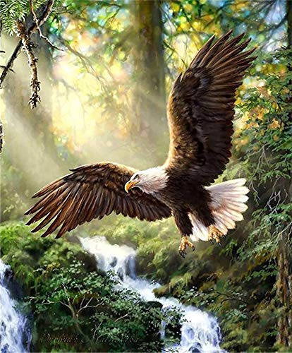 DIY 5D Diamond Painting Woods Eagle, Kaliosy by Number Kits Paint with Diamonds Arts Canvas Wall Decor 16x20 inch K2-177 (X12696)