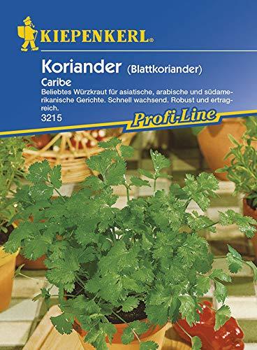 Kräutersamen - Koriander Caribe (Blattkoriander) von Kiepenkerl