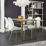 CosmoLiving by Cosmopolitan Juliette Glass Top, Gold Metal Dining Table