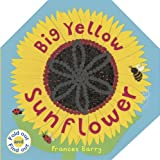 Big Yellow Sunflower (Fold Out and Find Out)