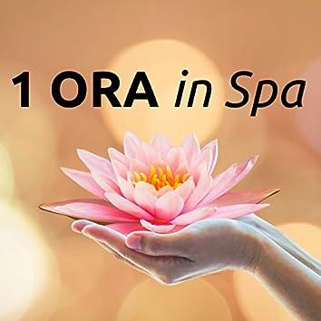 1 ORA in Spa - Musica di Sottofondo per Centri Benessere, Estetista, Hotel, Centro Massaggi
