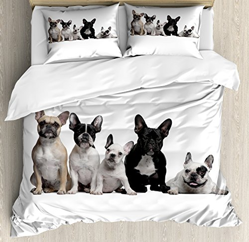 Ambesonne Bulldog Duvet Cover Set, Group of Young French Bulldogs with Expressions Animal Lover Photo, Decorative 3 Piece Bedding Set with 2 Pillow Shams, Queen Size, White Beige