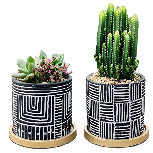 Terracotta Plant Pots, 4.7' Planter Pots with Drainage Holes and Saucers, Flower Pots Succulent Cactus Container Bonsai Indoor Outdoor, Pack of 2 - Plants Not Included