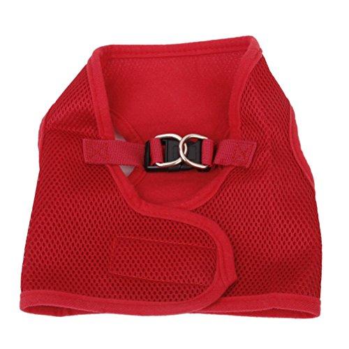 Pixnor Mesh respirant harnais veste pour Petit chiot - taille M (rouge)