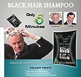 10x25ml Unisex Dexe Black Hair Shampoo Schwarze Haare In 5 Minuten Färben Tönen