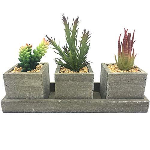 Aisamco Set von 3 künstlichen Sukkulenten Kaktus-Aloe-gemischten Sukkulenten-Topfpflanzen-Holz-Pflanzgefäß-Arrangement in rustikalem Holz-Viereck-Landhausstil mit Tablett