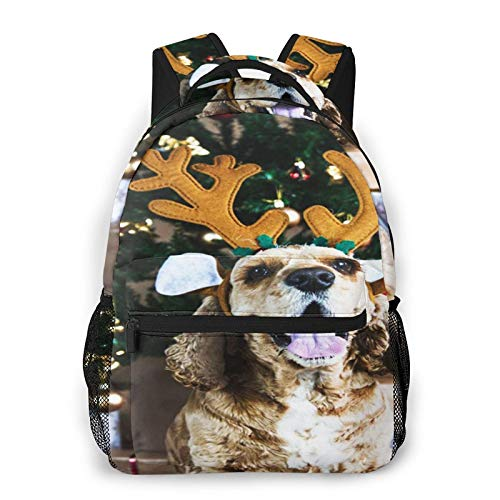 Backpack for Boys Girls Teen, American Spaniel Posing Travel Laptop Backpacks School Bag College Bookbag Daypack