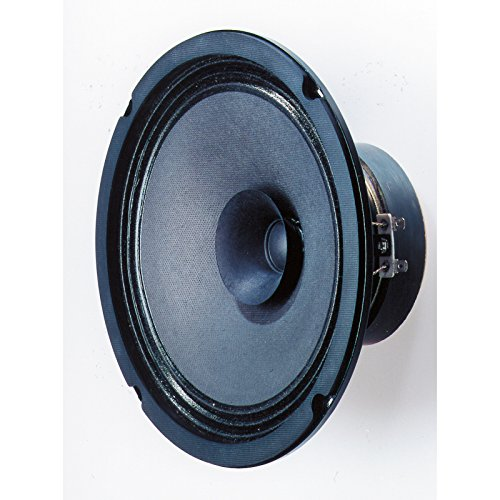 Visaton VS-BG20 - Lautsprecher (Verkabelt, 40 W, 8 Ohm, Schwarz)