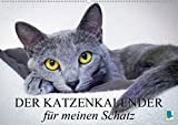 Der Katzenkalender für meinen Schatz (Wandkalender 2021 DIN A2 quer)