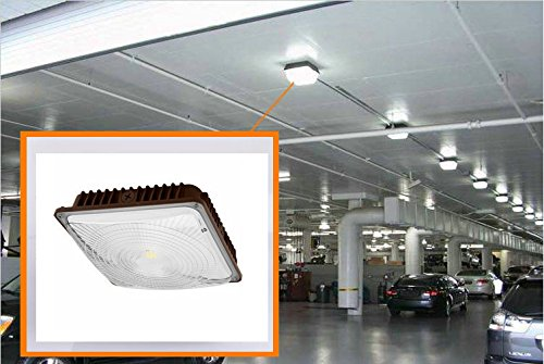 CYLED 65W LED Canopy Light Industrial Waterproof Explosion-Proof Outdoor High Bay Balcony Car Park Lane Gas Station Ceiling Light Equivalent 250W HID / HPS 6500 Lm 5500K DLC Qualified Pack of 2