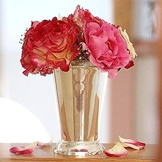 Best silver cup vase Reviews