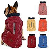 Pethiy Waterproof Windproof Reversible Dog Vest Winter Coat Warm Dog Apparel Cold Weather Dog Jacket Red S