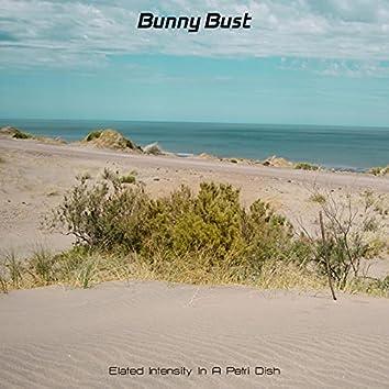Bunny Bust
