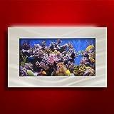 Aussie Aquariums 2.0 Wall Mounted Aquarium - Standard Seascape - Brushed Silver