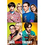 The Big Bang Theory - Pster con los personajes (Tamao nico) (Multicolor)