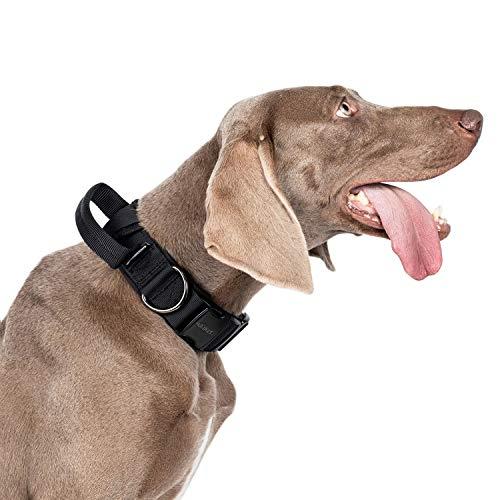 OneTigris K9-Halsband mit Metallschnalle für Hunde | MEHRWEG Verpackung (M)