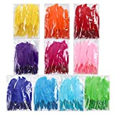 Best Feathers - Coceca 500pcs Natural Feathers, Bright Colors, Feathers Review