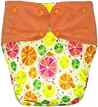 Cloth Diaper Cover - Reusable Special Needs Incontinence Briefs for Big Kids, Teens and Adults (Citrus, Regular)