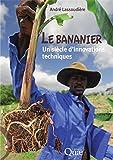 Le bananier: Un siècle d'innovations techniques