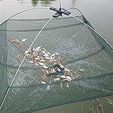 Zkenyao-net Fishing 2 Sizes, Foldable Mesh Baits Trap Cast Net, Crab Shrimp Smelt EEL Crab Lobster Minnows Shrimp Crawfish Net, Materials (Color : S)