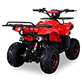 Kinder Quad S-8 Farmer 125 cc Motor Miniquad 125 ccm Toronto (Rot) - 3