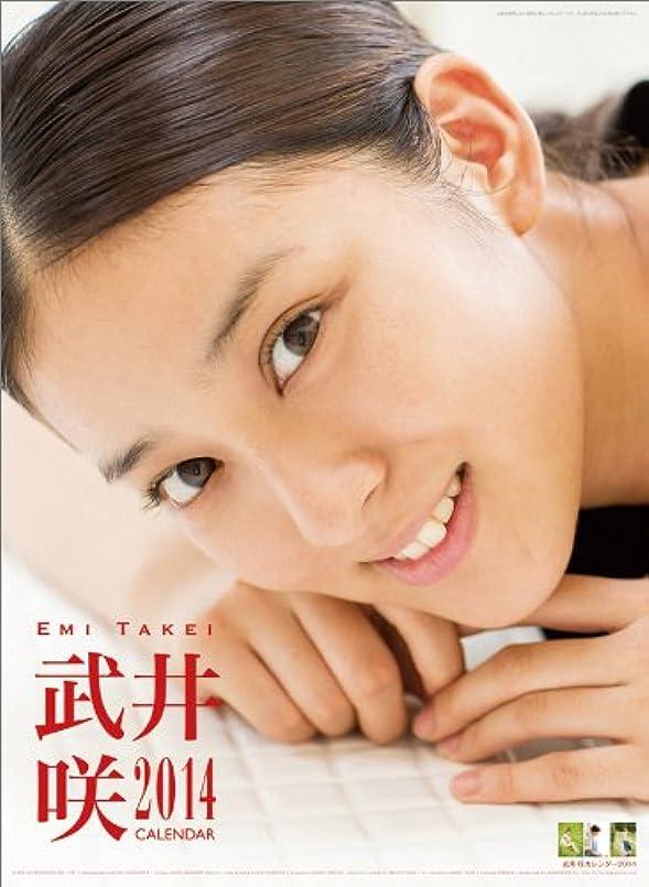 なので女の子ペンダント武井咲 カレンダー 2014年