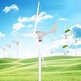 GOTOTOP 500W DC12V Turbina eolica 3 Lame Kit Generatore Eolico Elettricità Produttore Attrezzature Bianco