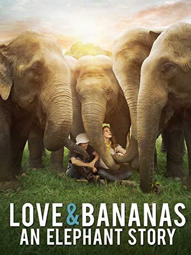 Love & Bananas - An Elephant Story