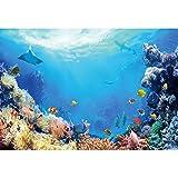 Leowefowa 2,2x1,5m Vinilo Telon de Fondo Mundo Submarino Fondo Vida Marina Cumpleaños Pescado de mar Coral Fondos para Fotografia Fiesta Niño Adulto Bebé Retrato Photo Studio Props Photo Booths