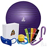 SHAPE UP Home Workout Equipment for Home Gyms | Pilates Ball with Quick Pump, Thigh Master, Hip...