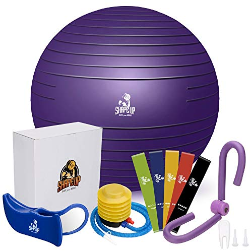 Shape Up Home Workout Equipment with Exercise Ball | Pilates Ball, Thigh Master, Resistance Bands, Hip Trainer & Quick Pump | Kegel Exerciser, Yoga Ball Chair for Home Gyms | Manual & eBook Included