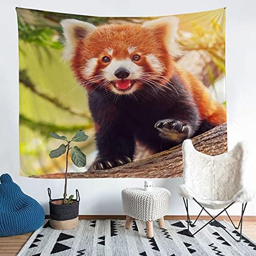 Manta de pared de mapache lindo patrón de animal tapiz para niños niñas niños mapache impreso pared colgante decoración de habitación estilo natural grande 58 x 79