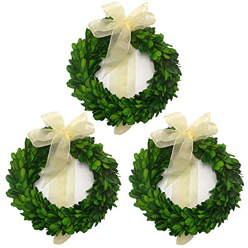 LMflorals Preserved Boxwood Wreath Decor 6 inch, Nature Real Handcrafted Boxwood Round Wreath Green Garland for Indoor Farmhouse Decorations Wreath Wall Window Home Décor 3 PCS (6 inch)