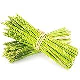Semi di asparagi piantati Semi di ortaggi quattro stagioni Semi di asparagi in vaso 300