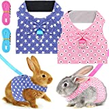 2 Sets Bunny Rabbit Harness with Leash Cute Adjustable Bunny Vest Mesh Harness Guinea Pig Harness with Bowknot Pet Costume for Small Animal Rabbit Hedgehog Ferret Piggies Squirrel Walking