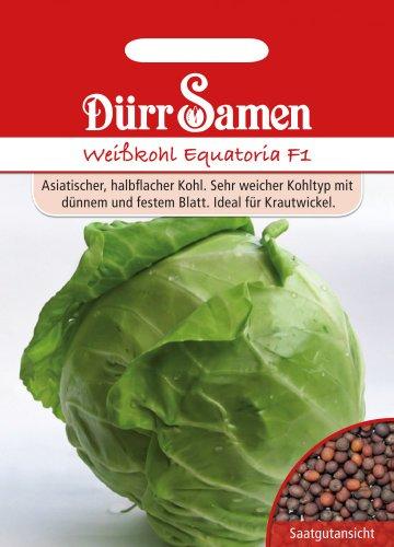 Kohlsamen - Weißkohl Equatoria F1 von Dürr-Samen