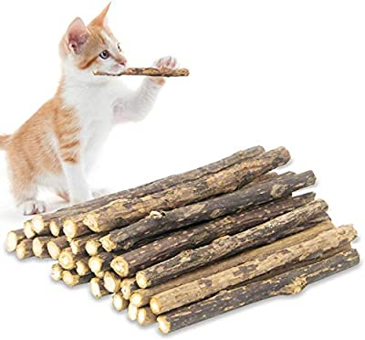 QUTOP 24 Pcs Matatabi Cat Sticks, Natural Silvervine Sticks for Cats Make The Cat Healthy, Catnip Sticks for Cats Kitten Kitty Teething Chew Toy, Cat Chew Stick Relieve Stress by QUTOP