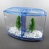 Alfie Pet - Baird Betta Aquarium Kit with Divider
