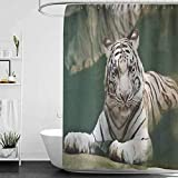 hengshu Tiger Odorless Waterproof Shower Curtain Bengal Symbol Swimming White Beast with Black Sprites Large Cat Animals Having Fun Large Home Decoration W95 x L72 Inch Teal White