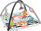 Fisher-Price-3-In-1 Music, Glow and Grow Gym, Multicolor (Mattel HBP41)