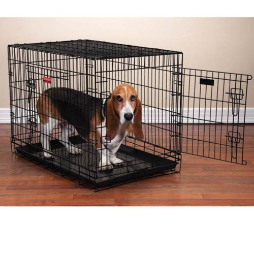ProSelect Everlasting Dual-Door Dog Crates for Dogs and Pets - Black; Medium, 30'L x 19'W x 22'H; Medium/Large, 36'L x 23'W x 26'H ; Large,  42'L x 28'W x 31½'H; X-Large, 48'L x 30'W x 34'H